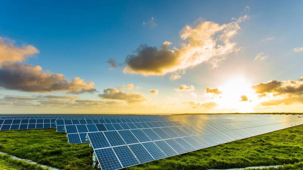 IEA: Điện mặt trời sẽ là 'vua mới' trên thị trường